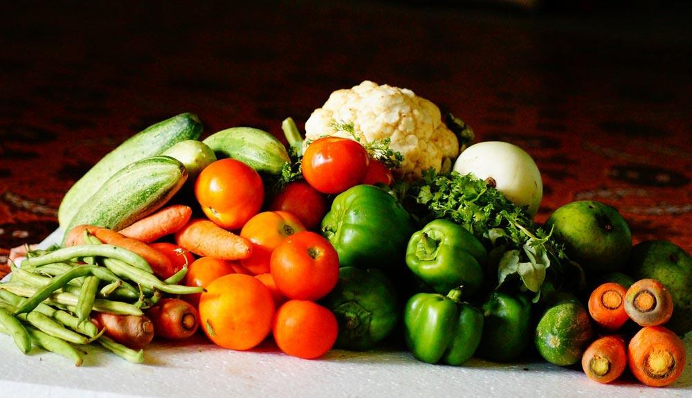 Nutricion Alquiza Salud