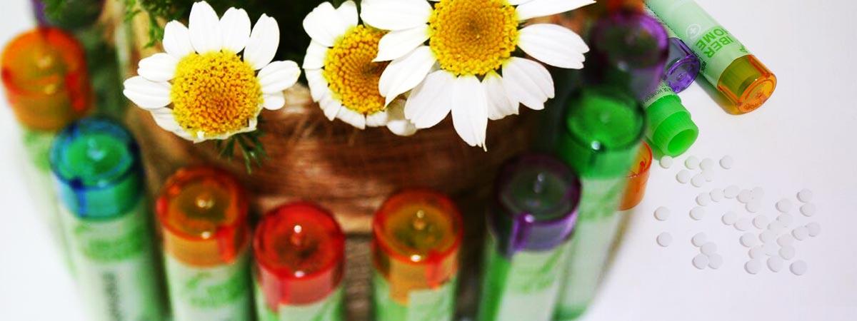 Todo sobre Homeopatía